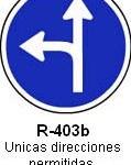Señal R-403b unicas direcciones permitidas